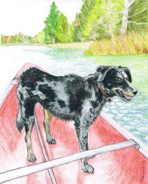 Badger: (not for sale) 2013 8″ x 10″ graphite and watercolour pencil (pet portrait commissions available)